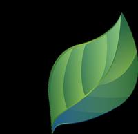 feuille-verte-1