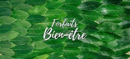 forfaits-bis geraldine fargeau dieteticienne nutritionniste bordeaux